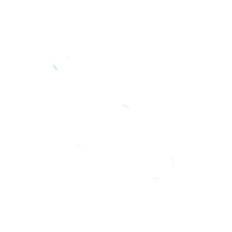 mandibula2